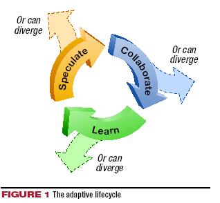 Использование методологии Adaptive Software Development - Теория программирования - Программирование - Программирование, исходники, операционные системы
